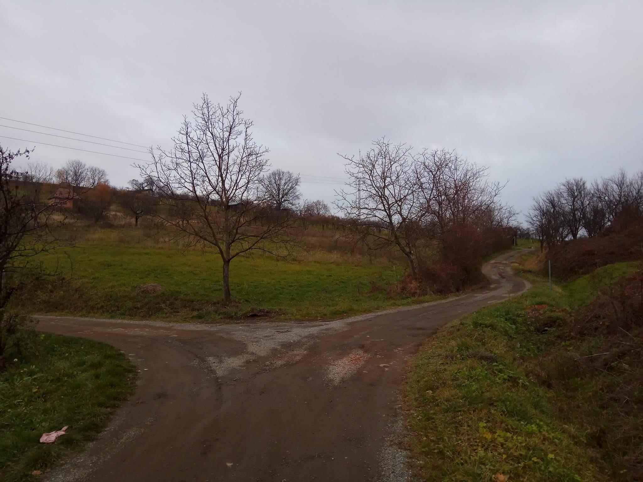 SB_NG_Slavca_Cernik_07